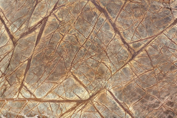 marble rain forest brown