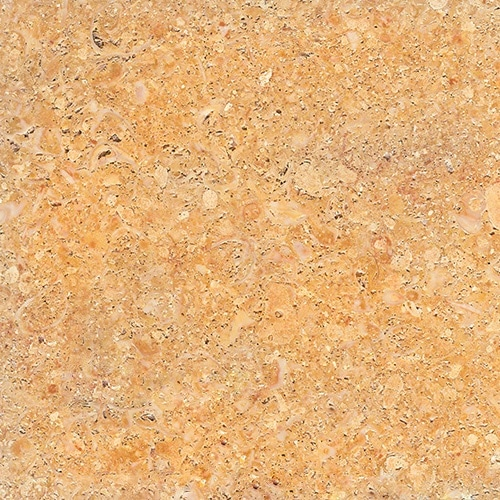 arenisca amarillo fósil