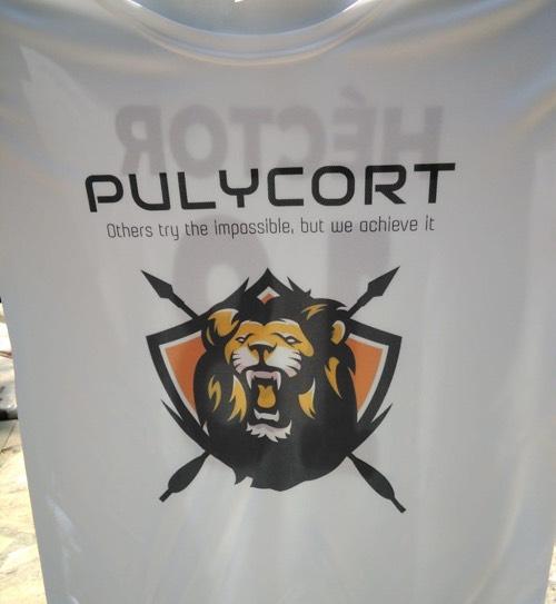 camiseta de fútbol leones pulycort